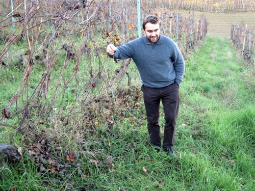 Organic Barbaresco — Roagna and Bruno Rocca